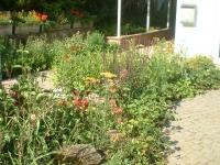 Privatgarten in Marburg Wehrda: Bild 4